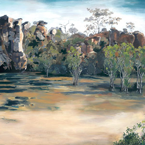Guardians of the Waterhole, NT Series, 2013