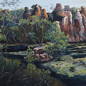 Guardians of the Waterhole, NT Series, 2016
