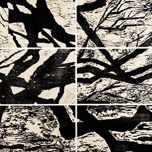 Wild Olive, Fragment No. 1